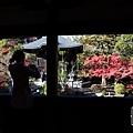 嵐山-3144.jpg