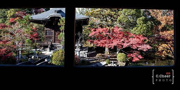 嵐山-3145.jpg
