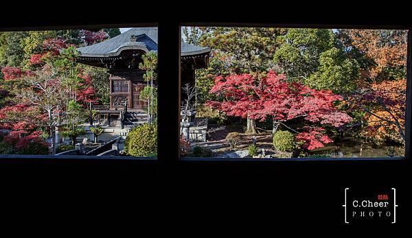 嵐山-3146.jpg