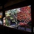 嵐山-3148.jpg