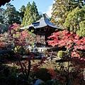 嵐山-3150.jpg