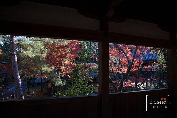 嵐山-3152.jpg