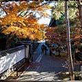 嵐山-3153.jpg