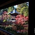 嵐山-3154.jpg