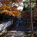 嵐山-3155.jpg