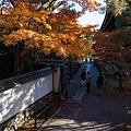 嵐山-3156.jpg