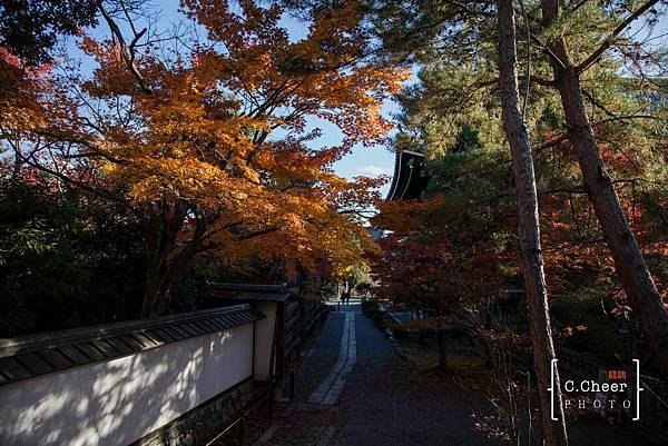 嵐山-3157.jpg