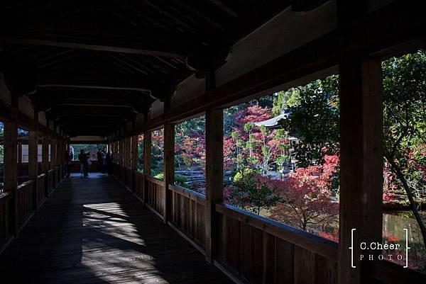 嵐山-3159.jpg