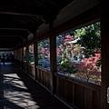 嵐山-3160.jpg