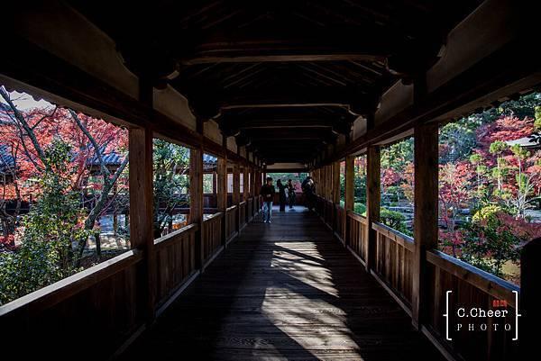 嵐山-3161.jpg