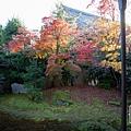 嵐山-3162.jpg
