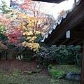 嵐山-3163.jpg