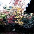 嵐山-3164.jpg