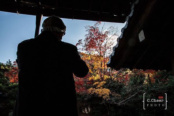 嵐山-3165.jpg