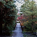 嵐山-3168.jpg