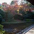 嵐山-3171.jpg
