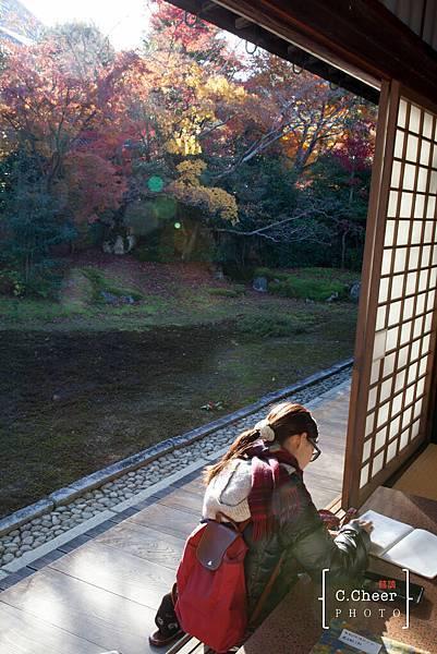 嵐山-3174.jpg