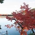 嵐山-3218.jpg