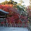 嵐山-3220.jpg