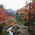 嵐山-3235.jpg