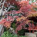 嵐山-3244.jpg