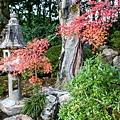 嵐山-3246.jpg