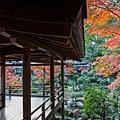 嵐山-3247.jpg