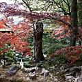 嵐山-3256.jpg