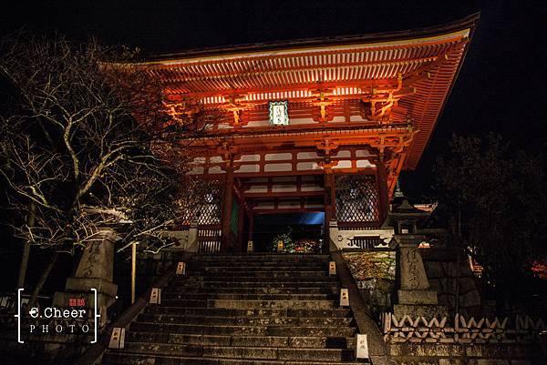 清水寺夜楓-2948.jpg