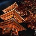 清水寺夜楓-2964.jpg