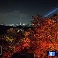 清水寺夜楓-2997.jpg