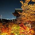 清水寺夜楓-3035.jpg