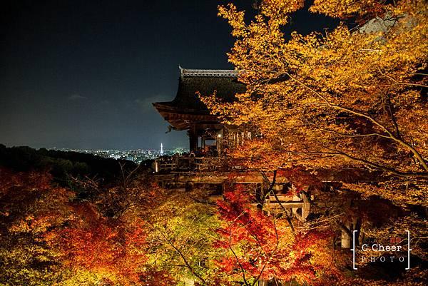 清水寺夜楓-3036.jpg