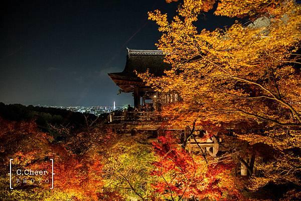 清水寺夜楓-3037.jpg