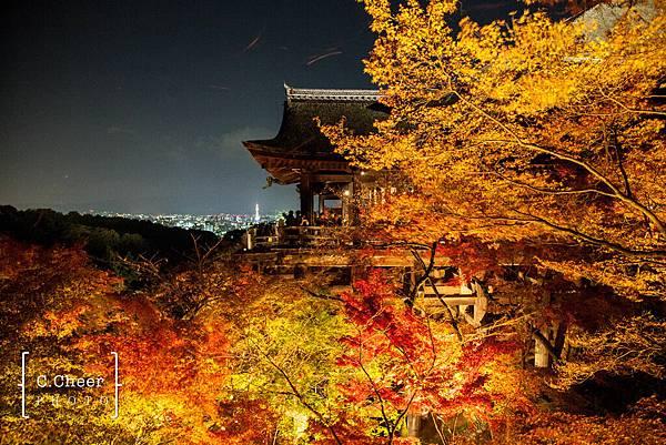 清水寺夜楓-3038.jpg