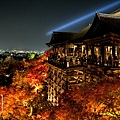 清水寺夜楓-3041.jpg
