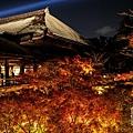 清水寺夜楓-3045.jpg