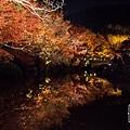 清水寺夜楓-3115.jpg