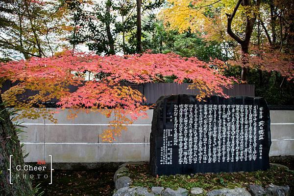 天橋立-2690.jpg