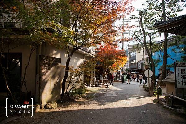 天橋立-2711.jpg