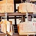 天橋立-2677.jpg