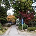 天橋立-2687.jpg