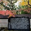 天橋立-2692.jpg
