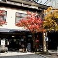 天橋立-2716.jpg