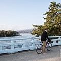 天橋立-2731.jpg