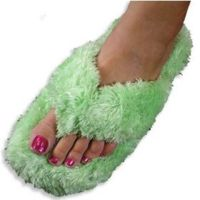 200px-Novelty_slipper1.jpg