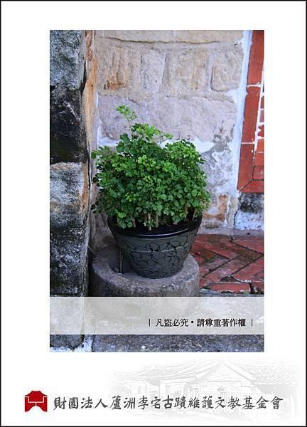 花開李宅part3