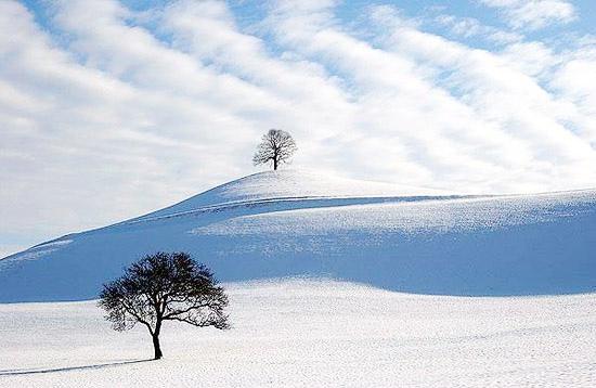 北海道冬景