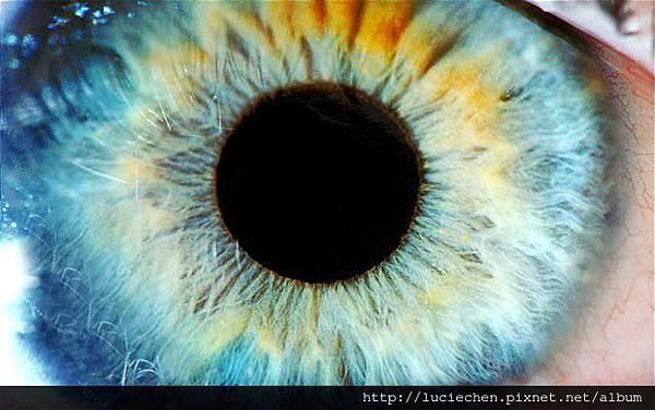 eye_1819937b