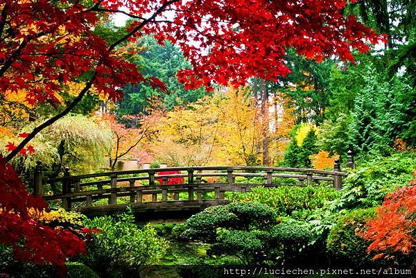 garden-bridges-5830x3890-wallpaper-2322780